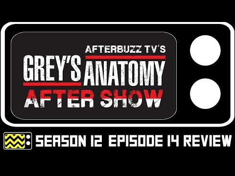 Grey's Anatomy Season 12 Episode 14 Review & After Show | AfterBuzz TV