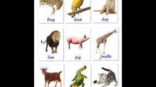 Learn english vocabulary for your baby - The names of the animals Flashcards | Old version