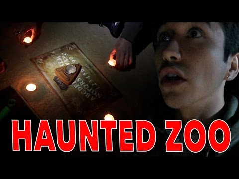 Thumbnail: Playing the OUIJA board at an Abandoned HAUNTED Zoo...