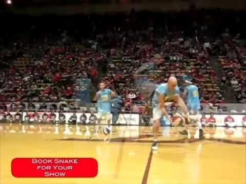Basketball Halftime Show | Freestyle Entertainment & Streetball Tricks | NBA NCAA Nike Red Bull