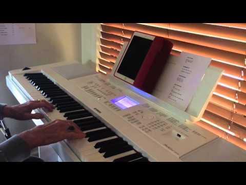 Yamaha DGX-660 Digital Piano &Tyros 2 backings