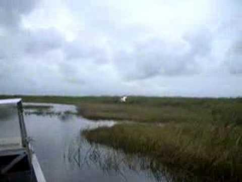 Everglades Fan Boat Ride Youtube