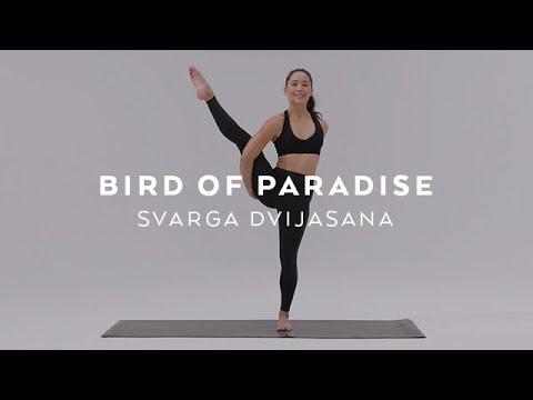 How to do Bird of Paradise Pose | Svarga Dvijasana Tutorial with Briohny Smyth