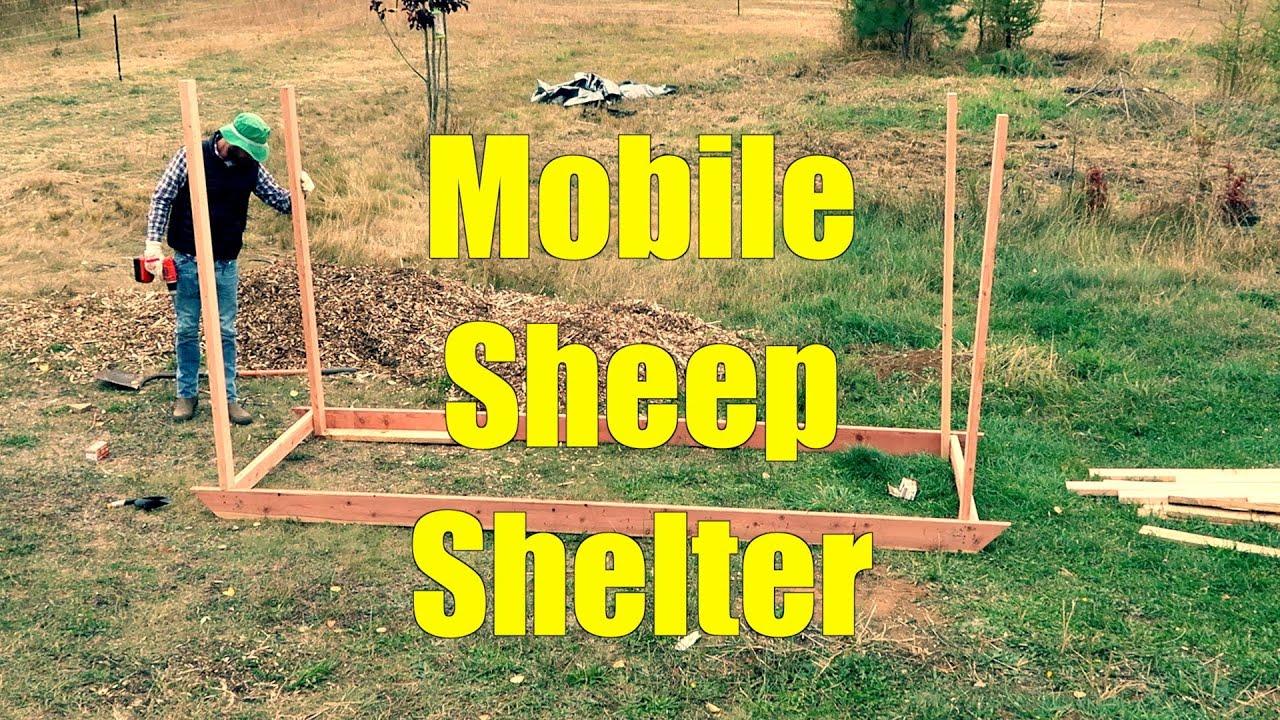 Mobile Sheep Shelter
