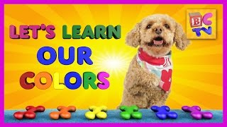 Learn Colors With Lizzy the Dog | Educational Video for Kids by Brain Candy TV