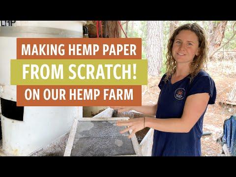 Making Hemp Paper From Scratch On Our Hemp Farm