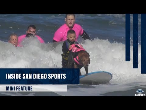 ISDS Mini Feature: Ricochet, the surfing dog