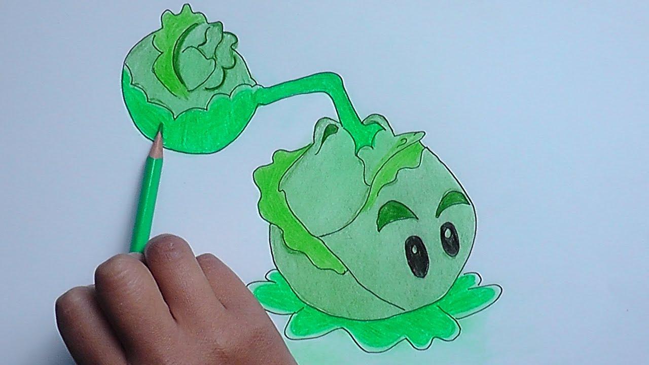 Como Dibujar A Un Pomelo De Pvz: Dibujando Y Pintando Coltapulta (Plants Vs Zombies