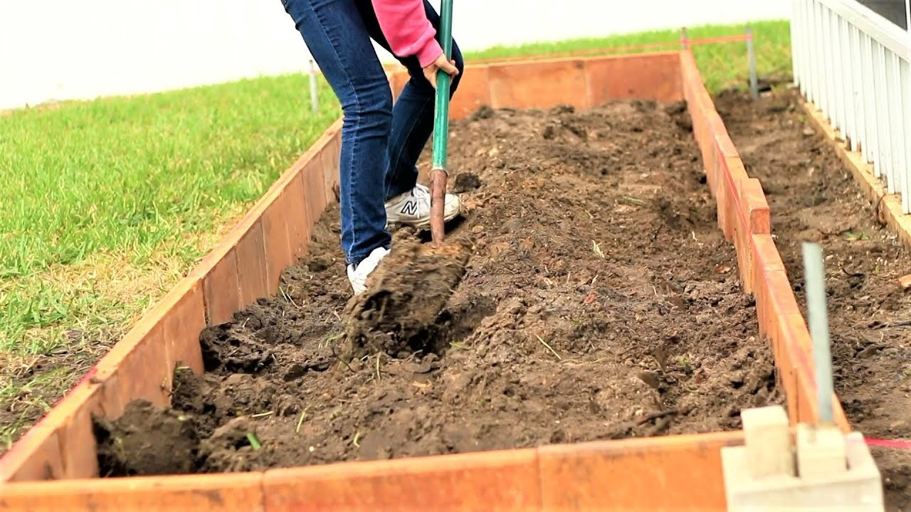 How to build a vegetable garden from lawn in three days