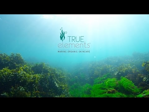 True Elements® Marine Organic Skincare  exclusively by Nikken