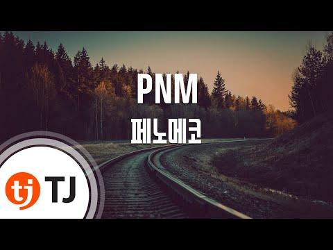[TJ노래방] PNM(Plus And Minus) - 페노메코 / TJ Karaoke