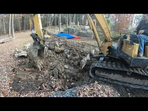 Digging a Oak stump out of rocky ground