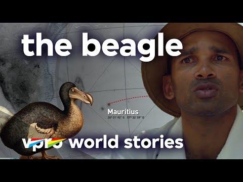 Destructive mankind - The Beagle