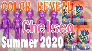 CHELSEA COLOR REVEAL Unboxing with Codes SUMMER 2020 BARBIE!!!!!