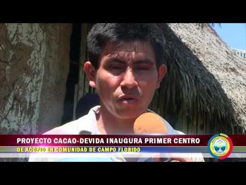 PROYECTO CACAO DEVIDA INAUGURA PRIMER CENTRO DE ACOPIO EN COMUNIDAD DE CAMPO FLORIDO