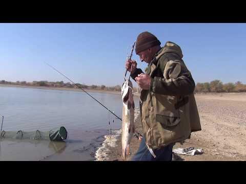 Рыбалка на октябрьском водохранилище адыгеи