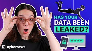 Data Leaks And Their Effects: How To Check If Your Data Has Been Leaked?