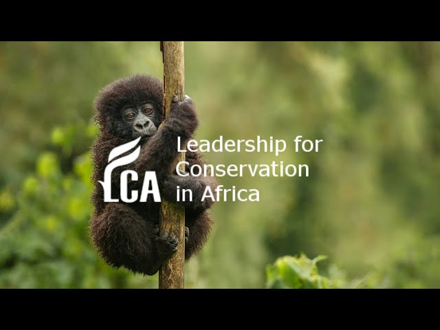 Conservation in Rwanda: Lessons and Challenges with Gaël vande Weghe