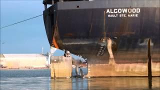 Ship ALGOWOOD towed into Port Weller drydock