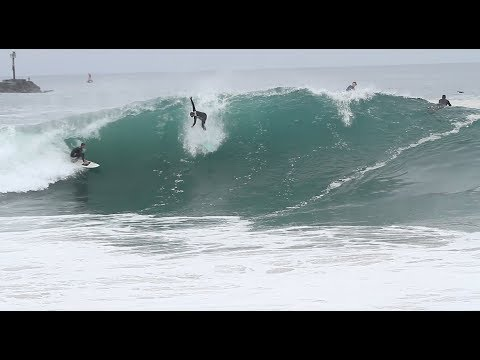 Poopies Went to the Wedge, and It Was Amazing