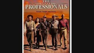 The Professionals Theme