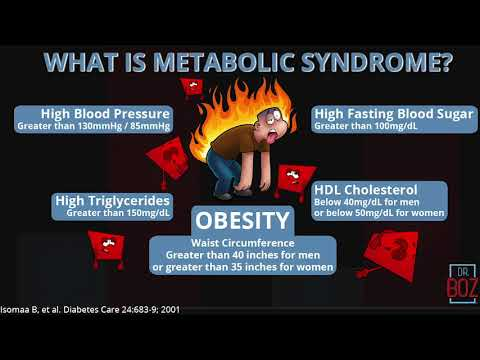 what-is-metabolic-syndrome-the-truth-about-cholesterol--dr.annette