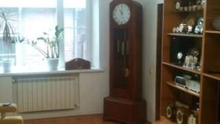 Напольные часы Янтарь