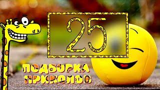 Смешные видео 25 Апрель 2021 подборка приколов