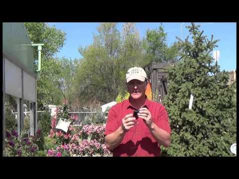 04/04/15 Drip Irrigation Design and Install Garden Class