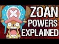 ZOAN Fruits Explained!! Animal Transformations & Powers