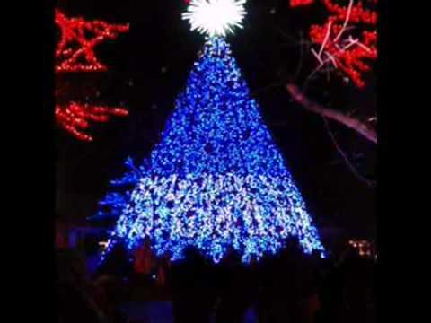 Giant Singing Christmas Tree - YouTube