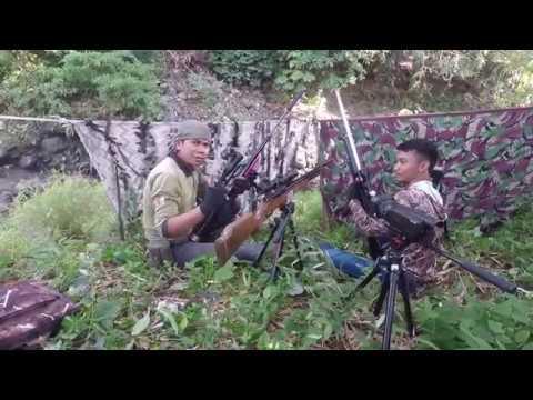 berburu biawak