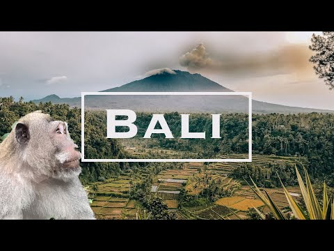 Things to do in BALI, Indonesia - Bali Adventure: Ubud, Volcano, Monkeys