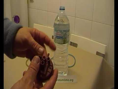 El nombre del hongo sobre las uñas de los pies