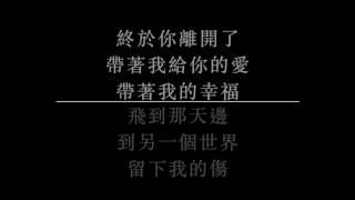 翻唱 陳奕迅  遇見了你 BY 林志程