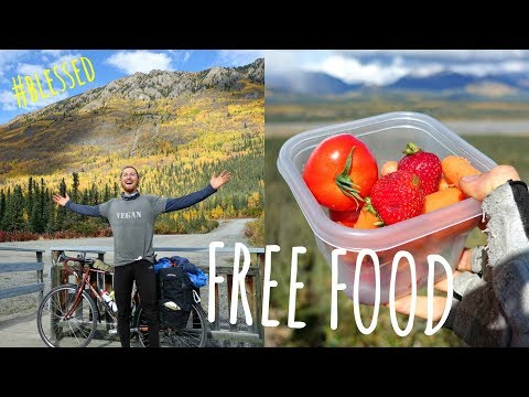 How I Got FREE VEGAN FOOD On My Bike Tour // What I Eat In A Day Vlog
