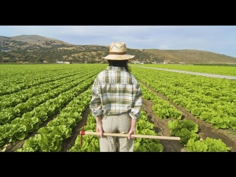 How Silicon Valley Influences Traditional Farming in California