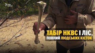 Табір НКВС і ліс, повний людських кісток