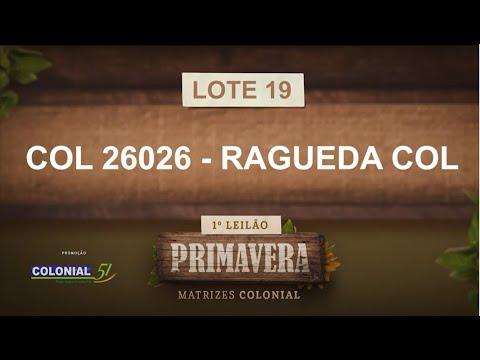 LOTE 19   COL 26026