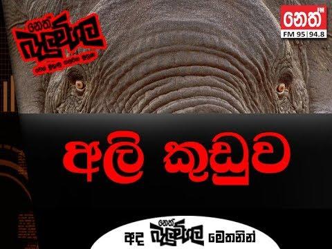 Balumgala - 13-09-2018