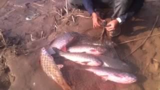 Fishing in Pakistan by aqibkhan11