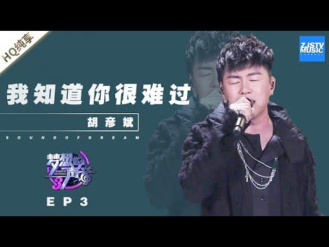 [ 纯享 ]胡彦斌《我知道你很难过》《梦想的声音3》EP3 20181109 /浙江卫视官方音乐HD/