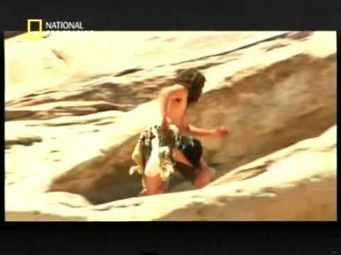 El origen del hombre - National Geographic - Español parte 3 de 5