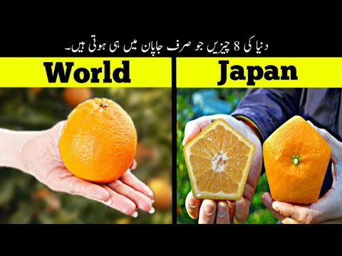 8 Things Only Happen In Japan | دنیا کی وہ چیزیں جو صرف جاپان میں ہوتی ہیں | Haider Tv