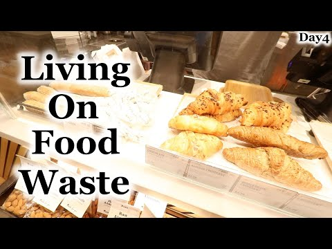 Living on Food Waste - Day4