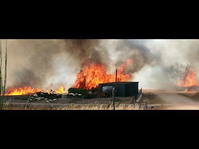 Incendio en Aldeadávila de la Ribera