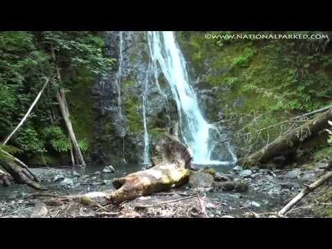 Madison Creek Falls in Olympic National Park (1080p)