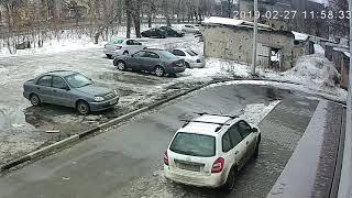 Неизвестный украл труп собаки в Воронеже