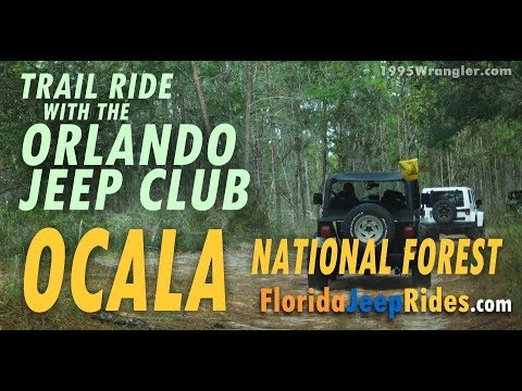 Our First Ride With Orlando Jeep Club - Ocala Trail Ride Oct 28 2017