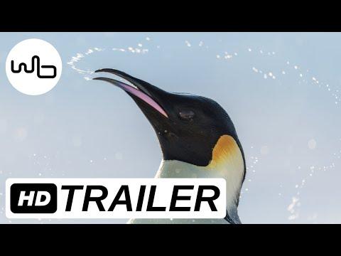 DIE REISE DER PINGUINE 2 | Offizieller deutscher Trailer | ab 02. November im Kino!